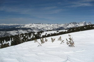 backcountry_ski_mammothcrest_200766